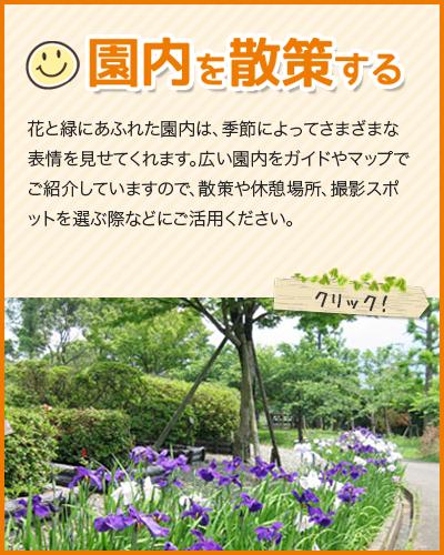 スマホサイト:園内を散策する