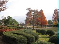 画像:本館前より芝生広場を眺めた風景